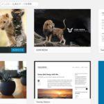 【LION MEDIA】インストール後の基本設定内容はこれだ!初心者向けの設定手順と本サイトの設定内容を公開